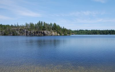 FOCI Lake Research Contract Opportunity